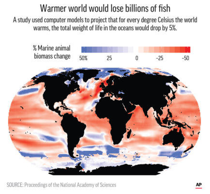 EM4 19 News warm oceans biomass lost