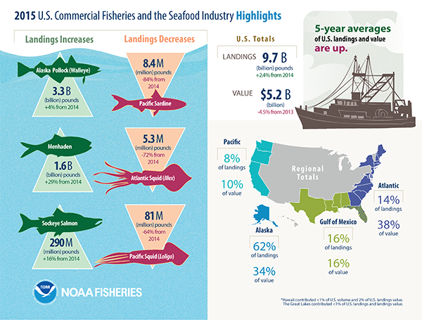 a look at the development of commercial fishing industry Increasing demands on wild fisheries by commercial fishing operations have caused widespread overfishing the traditional fishing industry, or artisan fishing.