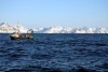 Opportunities for fisheries as the Arctic ice melts