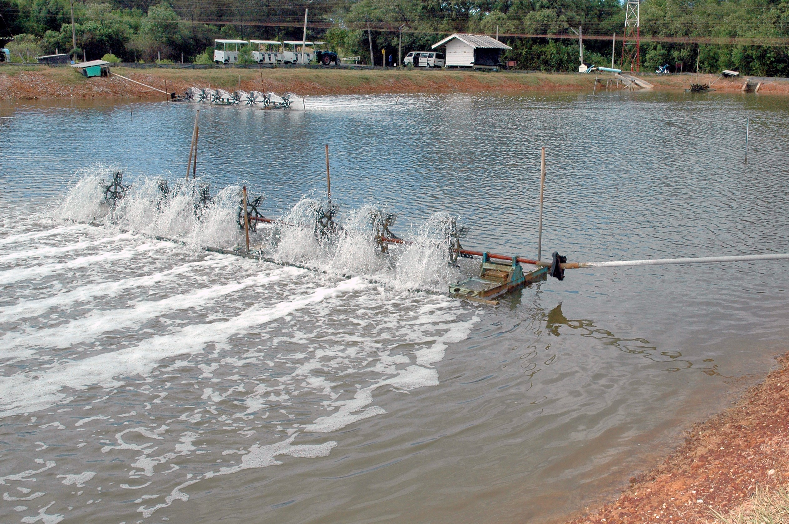 Aeration systems and pure oxygen in aquaculture - Eurofish