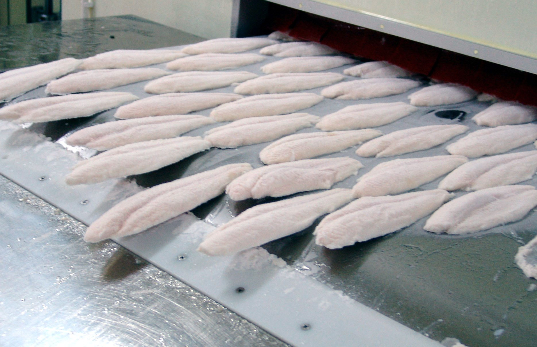 Prepared Meals Delivered >> Which freezing method is best? - Eurofish Magazine